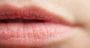 Soin des lèvres